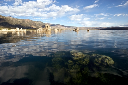 Submerged Tufa