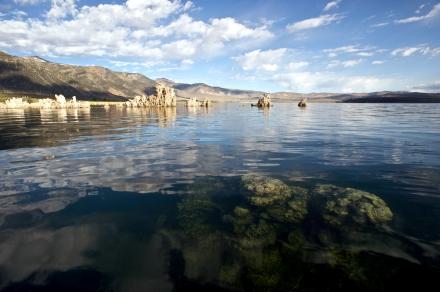 Submerged Tufa