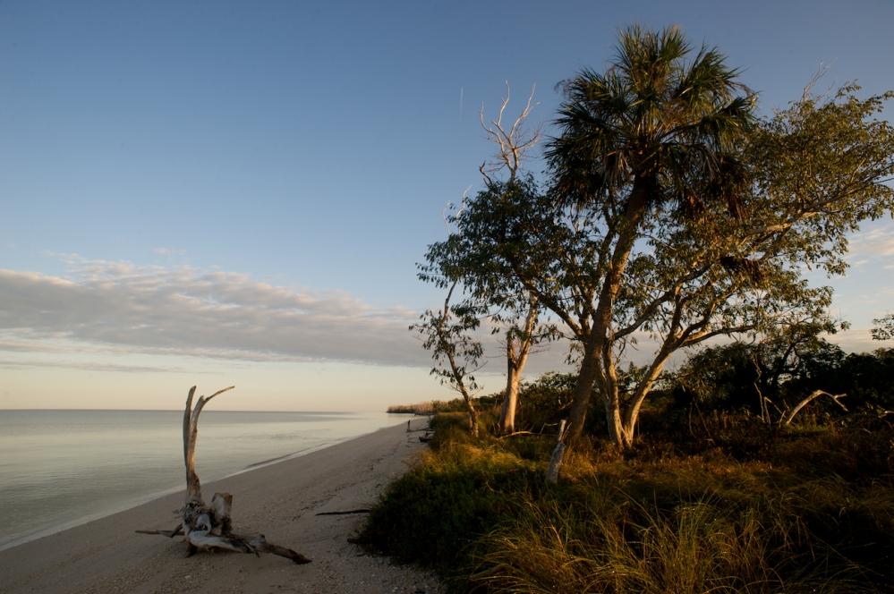 Outward Bound Everglades - William Jewell (1/6)