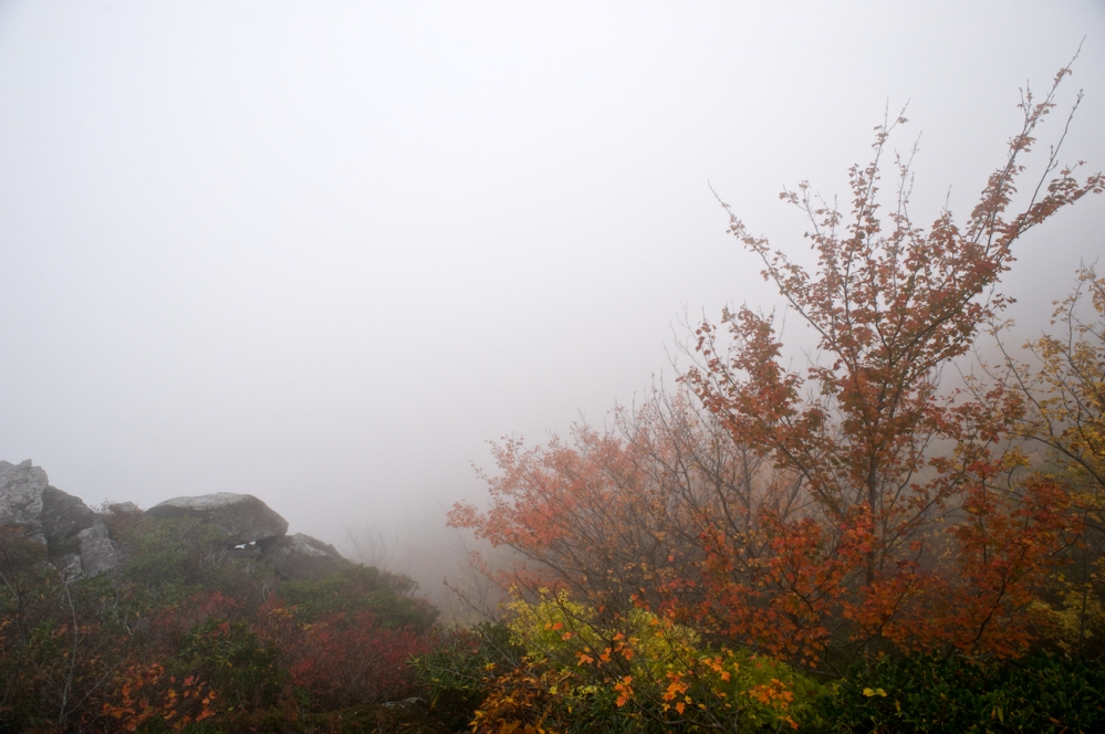 Fall in the Blue Ridge Mountains, part 2 (4/6)