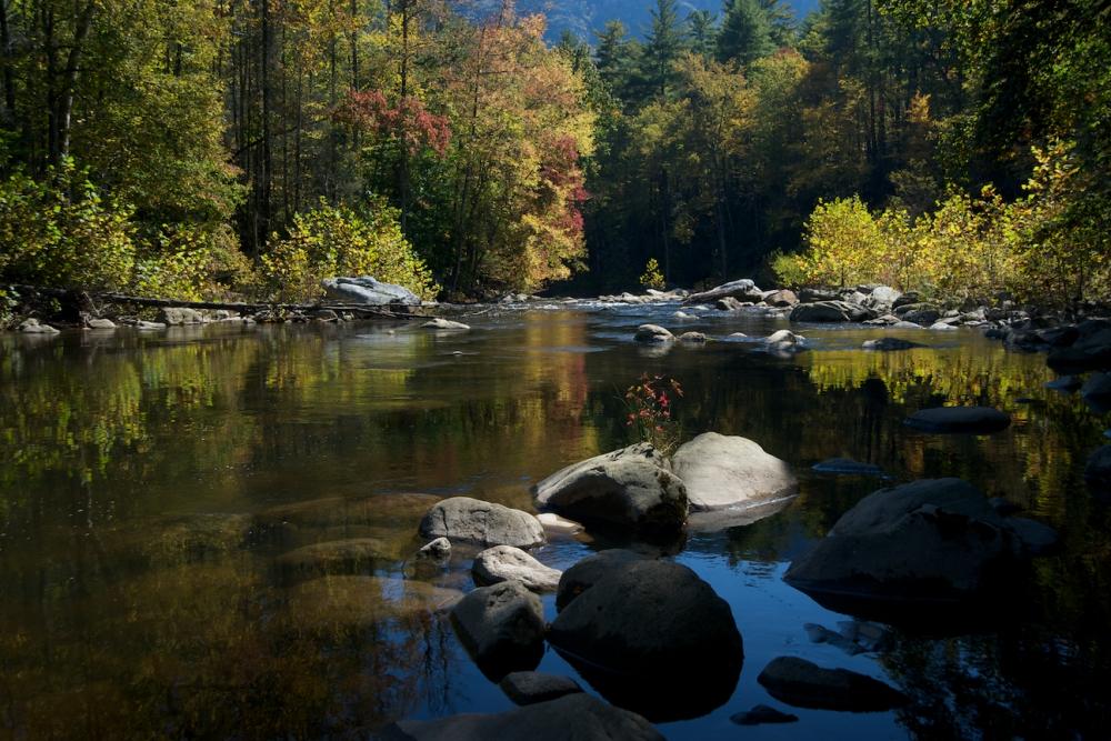 Fall in the Blue Ridge Mountains (2/6)