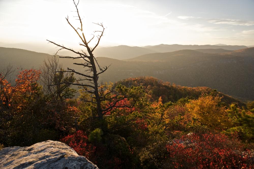 Fall in the Blue Ridge Mountains (1/6)