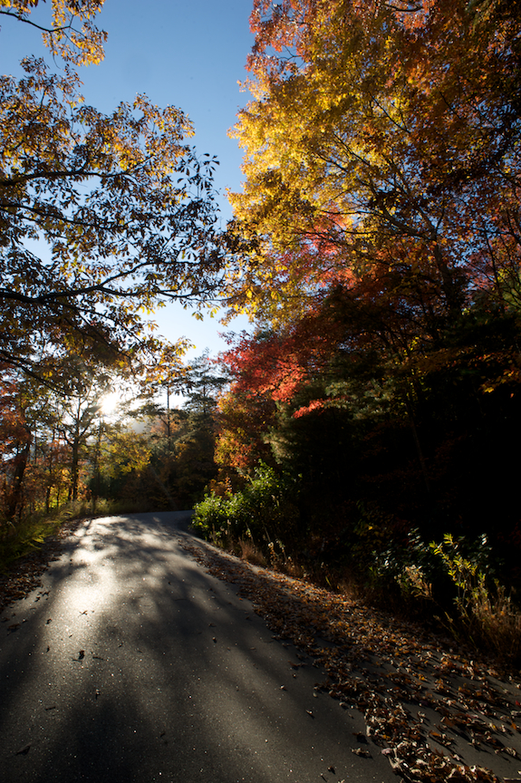 Fall in the Blue Ridge Mountains, part 2 (2/6)